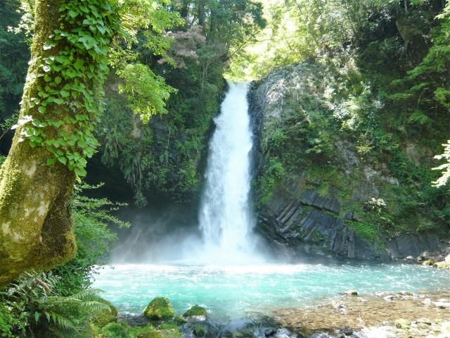 パワースポット天城峠・浄蓮の滝で運気アップ~温泉の美肌効果も抜群